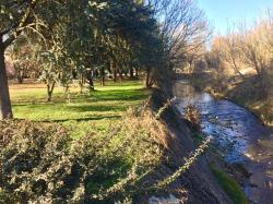 #Meda ha bisogno di aree verdi. Perchè la Giunta non vuole rendere fruibile il Parco delle Querce?